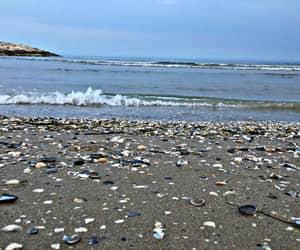 beach, estate, and ocean image