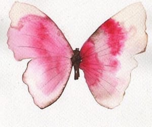 butterfly, painting, and pink image