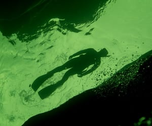 green, lime, and snorkling image