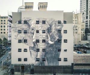 elefante, elephant, and street art image