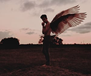 angel, boy, and wings image