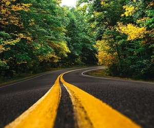road, tree, and aesthetic image