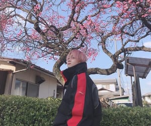 flowers, japanese, and pink hair image