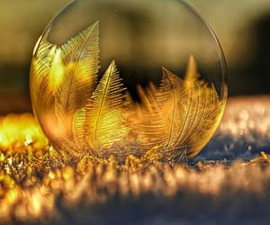 bubble, nature, and crystal ball image