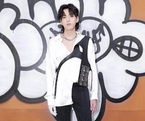 aesthetic, kris, and Louis Vuitton image