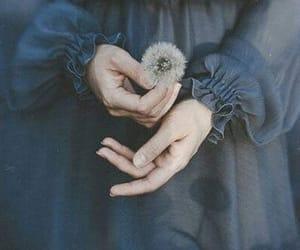 flowers, dandelion, and dress image