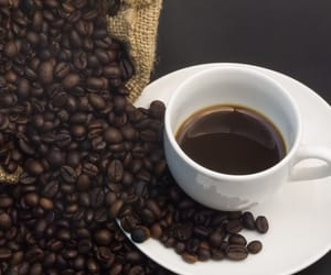 roasted coffee beans, premium coffee beans, and maui coffee image