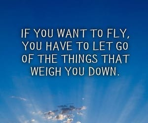 acceptance, fly, and let go image