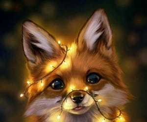 fox, too perfect, and cute image