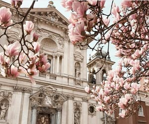 architecture, church, and flowers image