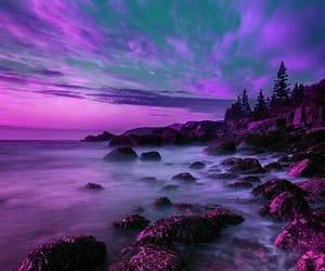 lila, purpur, and meer image