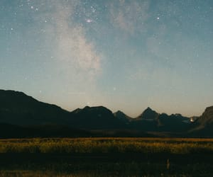 green, landscape, and montana image