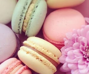 blumen, pastell, and sweets image
