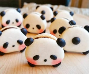 cute food, delicious, and eat image