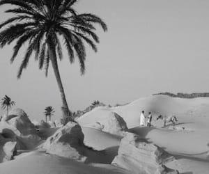black and white, deserto, and morocco image