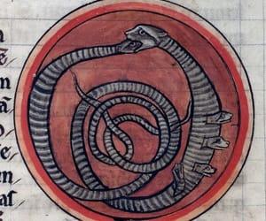 13th century, animals, and bestiary image