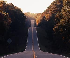 nature, sunshine, and road image