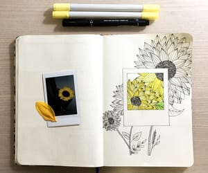 bullet, draw, and flower image