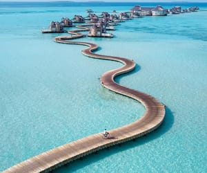beach, ocean, and Maldives image