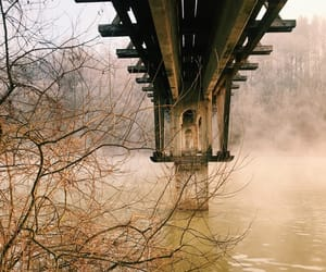 bridge, foggy, and forest image