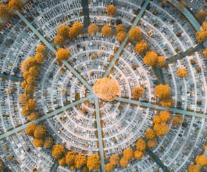 aerial photography, urbanization, and drone photography image