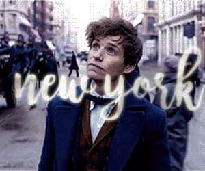 eddie redmayne, gif, and new york image