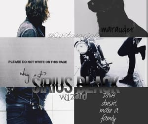 aesthetic, harry potter, and sirius black image