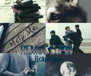 aesthetic, harry potter, and the marauders image
