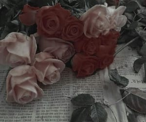 rose, aesthetic, and layers image