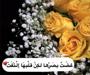 flower, ًورد, and tripoli image