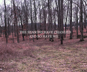 forest and text image