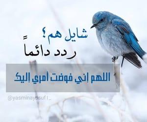 عصفور, دُعَاءْ, and ادعية image