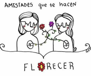 friendship, flowers, and frases image