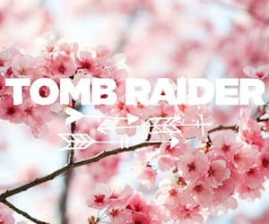 tomb, wallpaper, and raider image