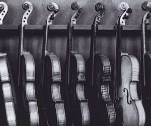 black, violin, and black and white image