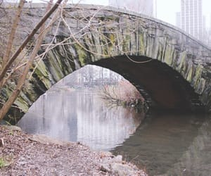 aesthetic, bridge, and Central Park image