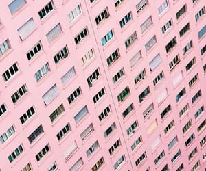 pink, wallpaper, and windows image