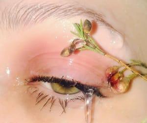 brow, eye, and flower image