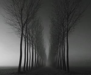 aesthetic, dark sky, and jan image