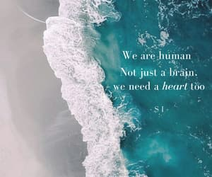 brain, human, and heart image