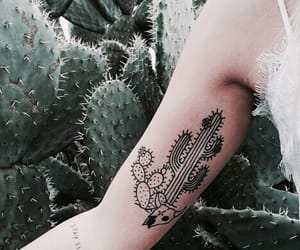 tattoo, cactus, and plants image