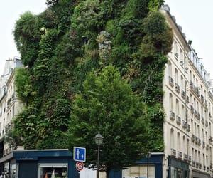 france, vertical garden, and paris image
