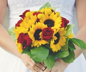 bouquet, roses, and sunflowers image