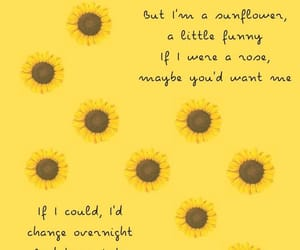 songs, sunflowers, and netflix image