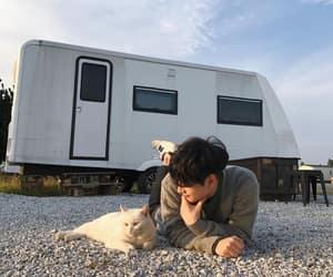 boy, cat, and korean image