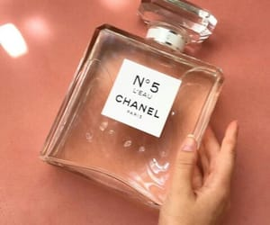 chanel, no 5, and pink image