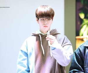 Chan, han, and hyunjin image