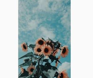çiçek, huzur, and doğa image