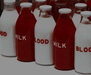 aesthetic, milk, and blood image
