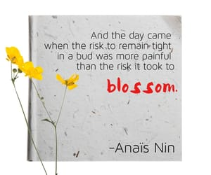 anais nin, growth, and quote image